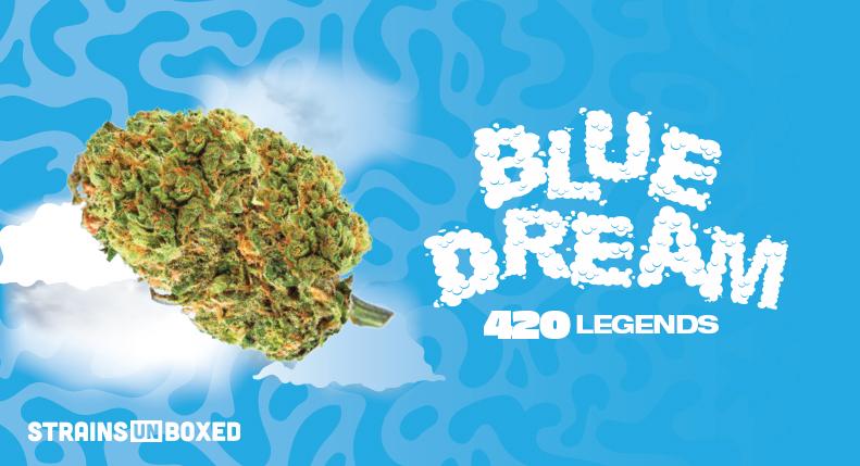 Spinach – Blue Dream Strain