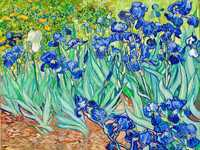 Each one of Van Gogh's irises is unique. He carefully studied their movements and shapes to create a variety of curved silhouettes bounded by wavy, twisting, and curling lines.