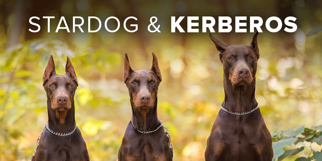Kerberos: Three-Headed Stardog