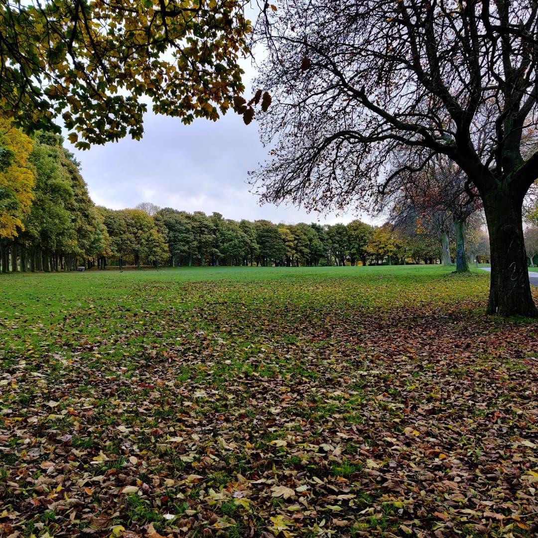 Woodhouse Moor/Hype top field