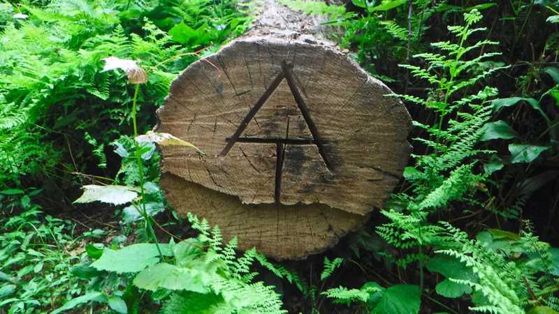 AT carved in log