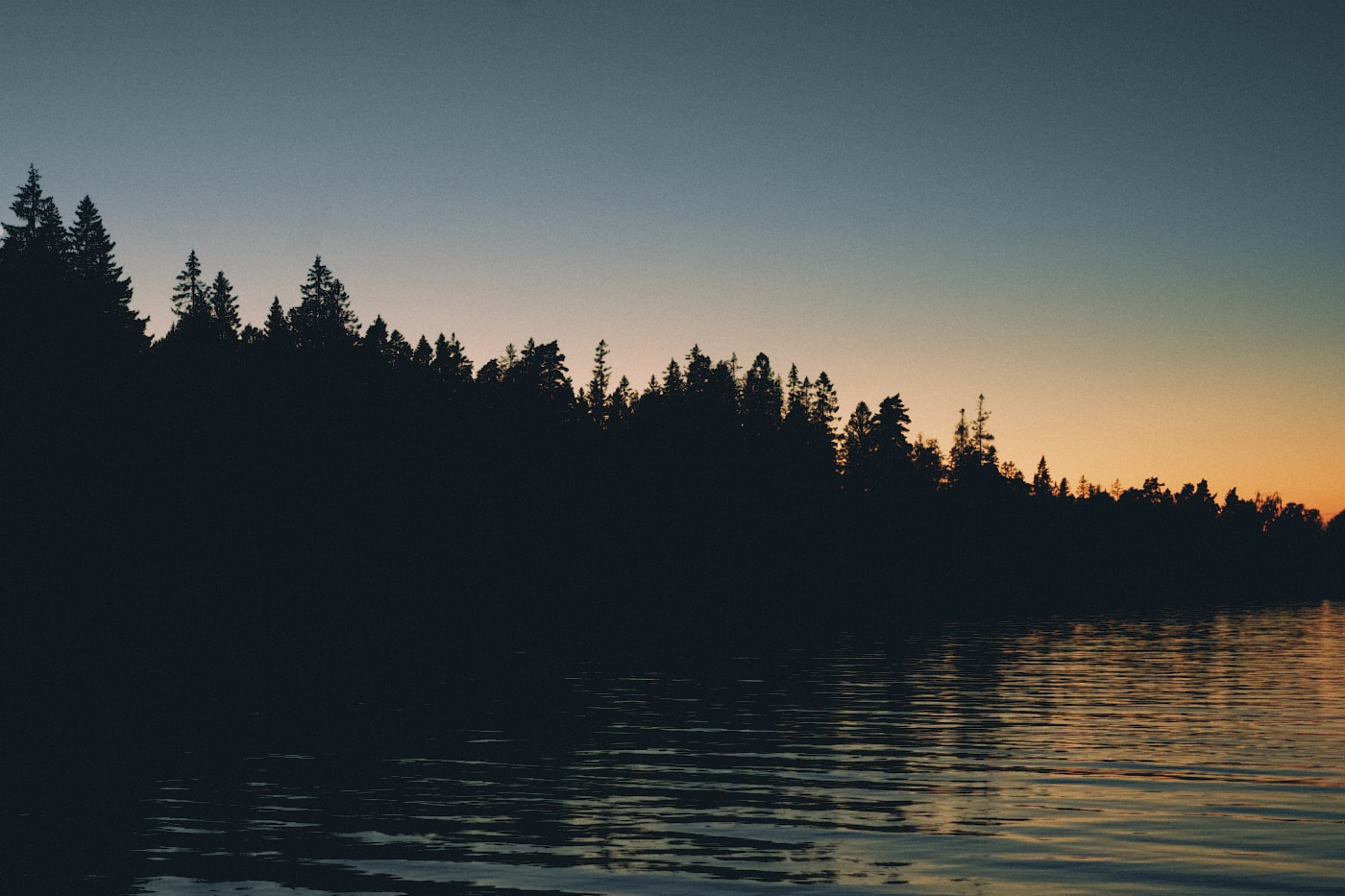 Silhouettes of trees during sundown. Calm water in the foreground. The sky is a gradient from charcoal to copper.