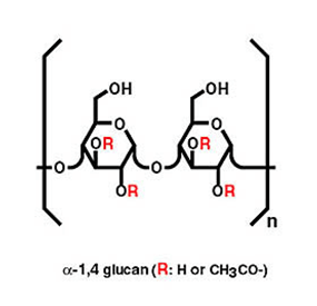 Alpha-glucans