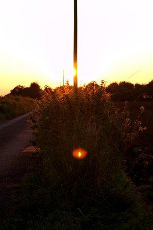 Sunset Flare 1340
