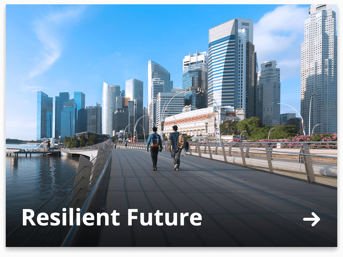 Resilient Future