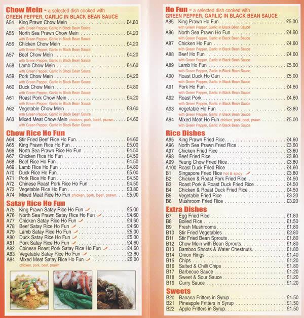 modern chinese takeaway food