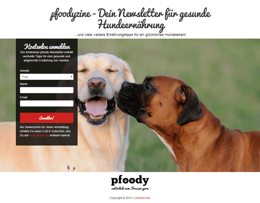 pfoody_-_pfoodyzine_-_Dein_Newsletter_f_r_gesunde_Hundeern_hrung_-_newsletter_pfoody_de