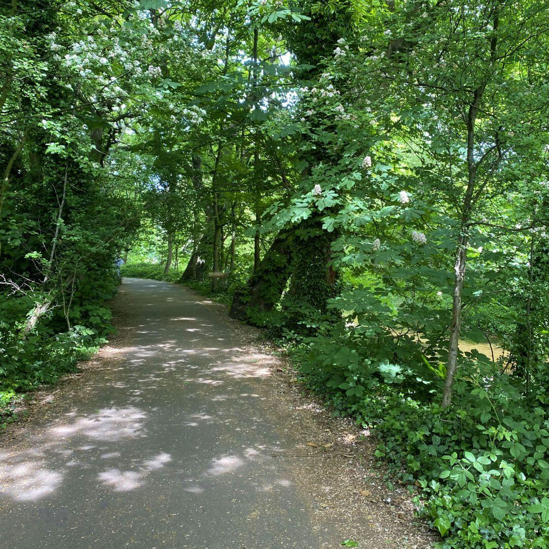 Kirkstall Abbey Footpath