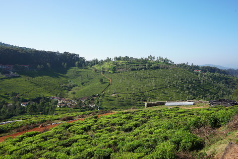 Hill Valley Enclave | Property in Wellington Coonoor