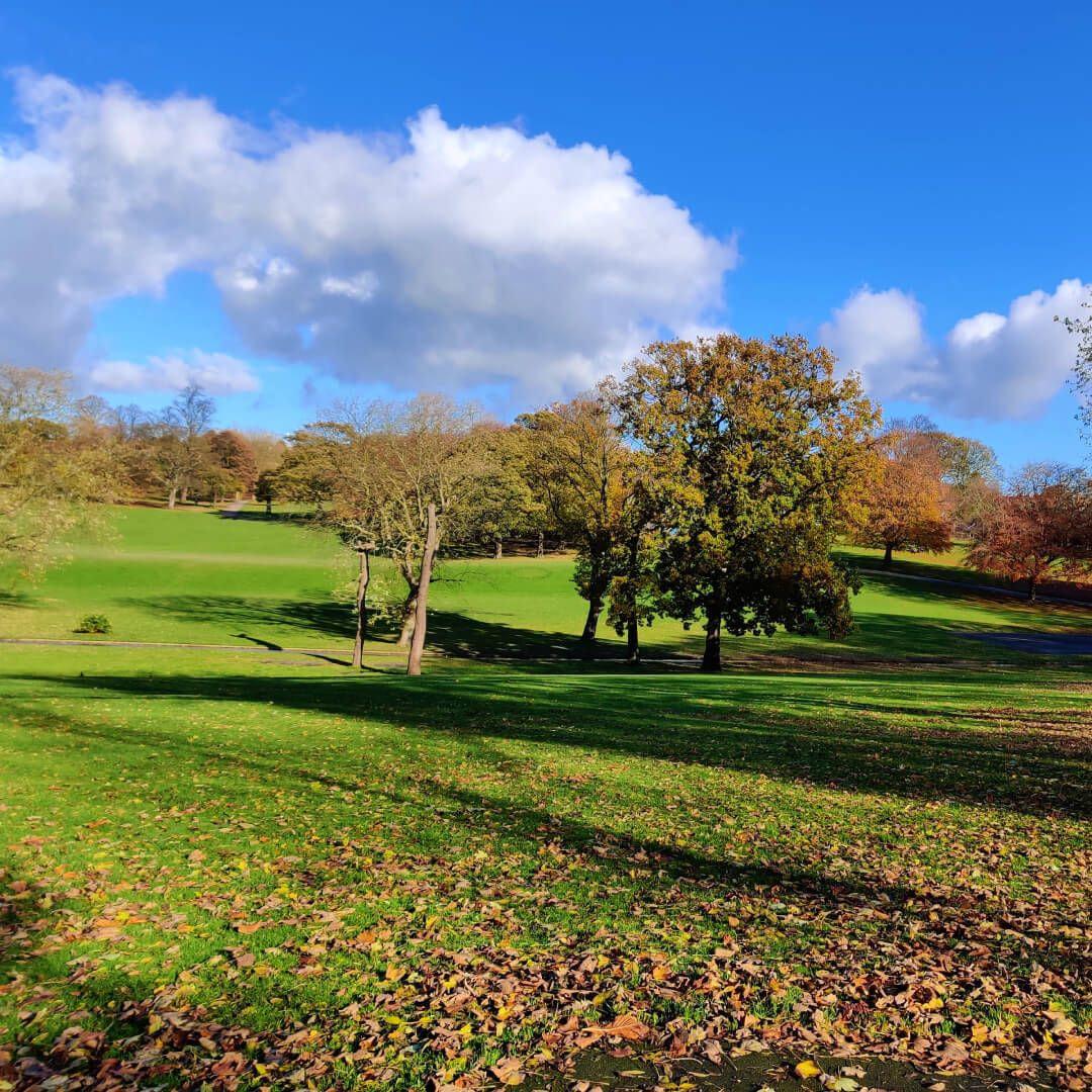 View across Potternewton Park in Autumn