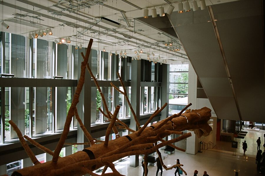 Lobby of the art museum where a big installation that looks like a tree trunk with branches hangs sideways from the ceiling