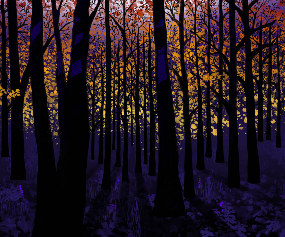 Seasons (fall)
