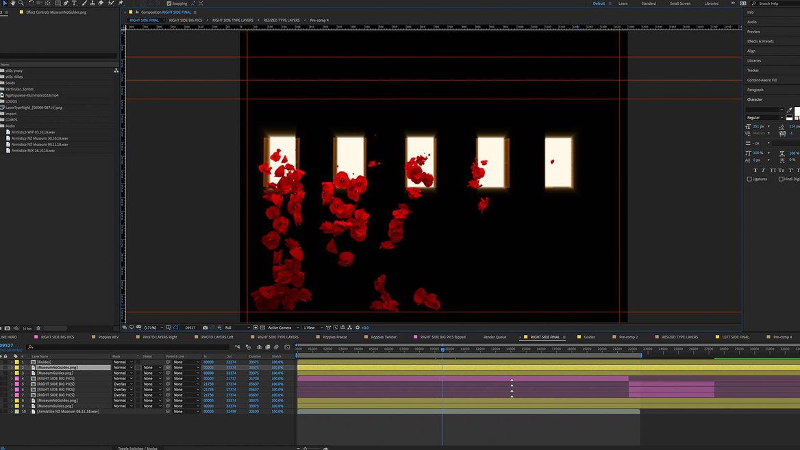 Armistice AWMM flowers image of After Effects