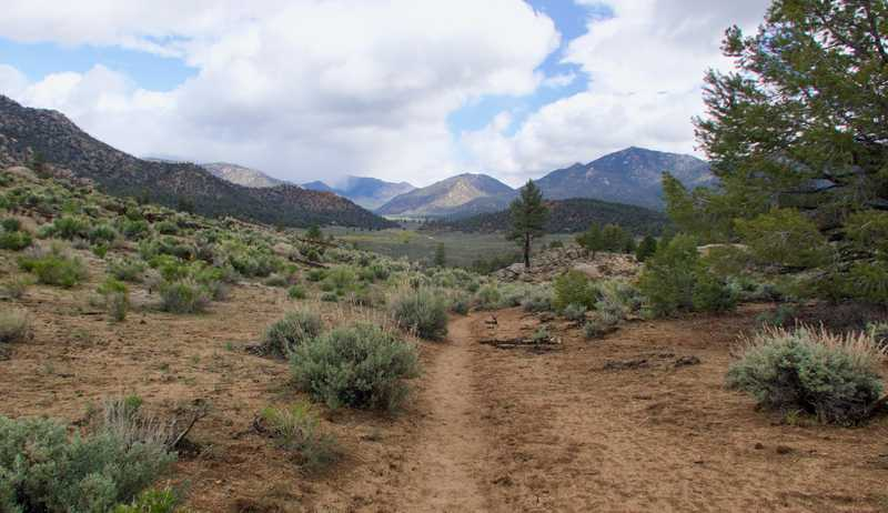 Trail leading to Kennedy Meadows