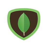 MongoDB - document-oriented database