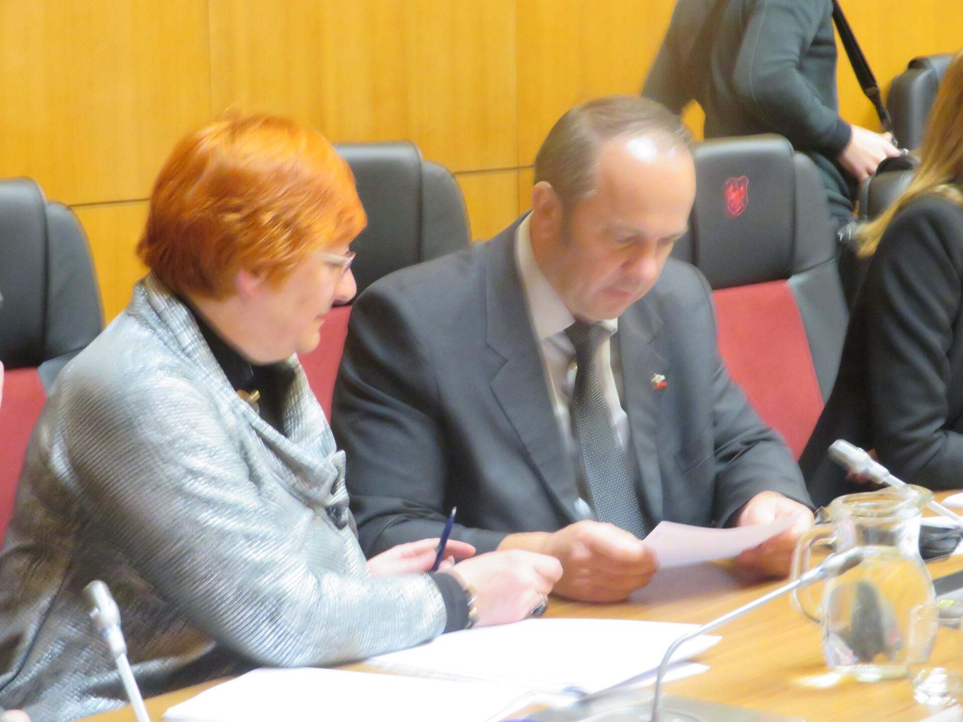 SDS ima v mestben svetu največje število svetnikov - 6. Saša Kristan sodi med najbolj izkušene člane sveta, Branko Grims pa se je podpisal pod predlog gradiva za obravnavo o prišlekih v Kranj.