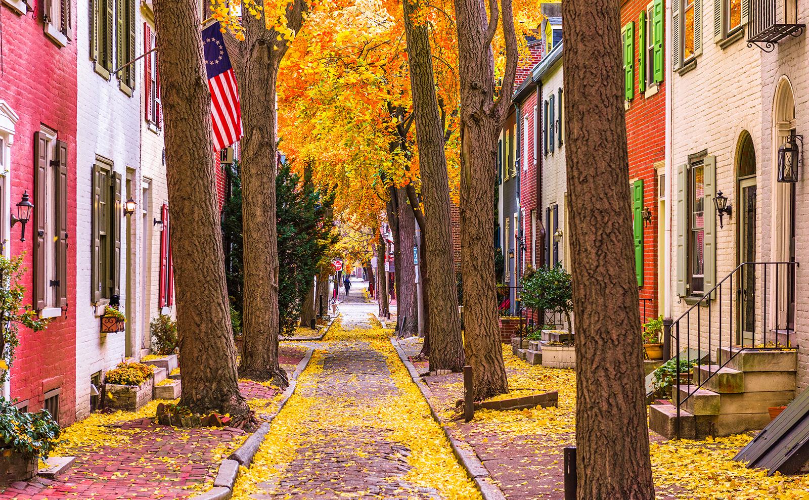 fall leaves in a narrow street in philadelphia