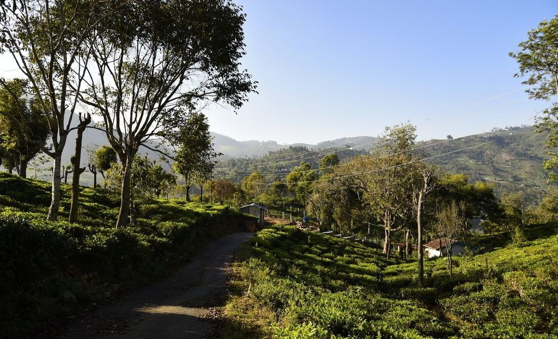 View of the valley near Halakarai
