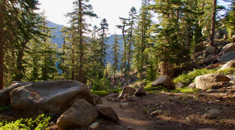 The PCT descends to Highway 4