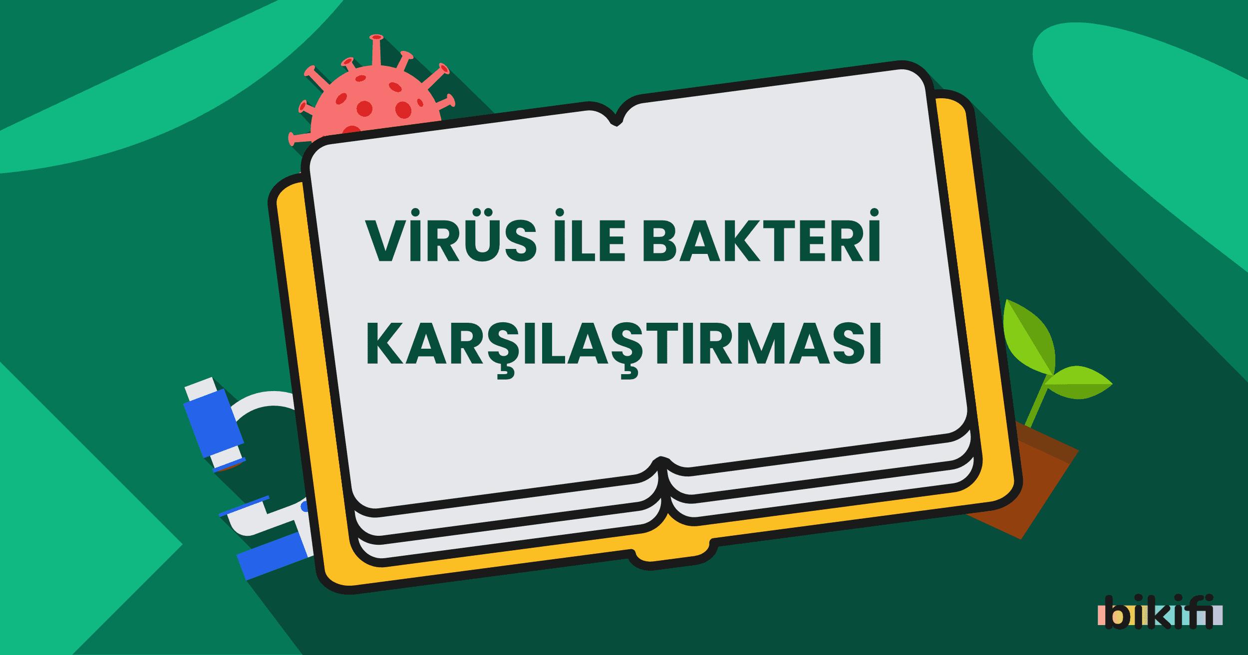 Virüs ile Bakteri Karşılaştırması