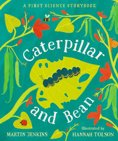 Caterpillar and bean image