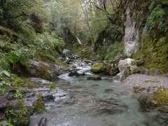 12 Mile Creek