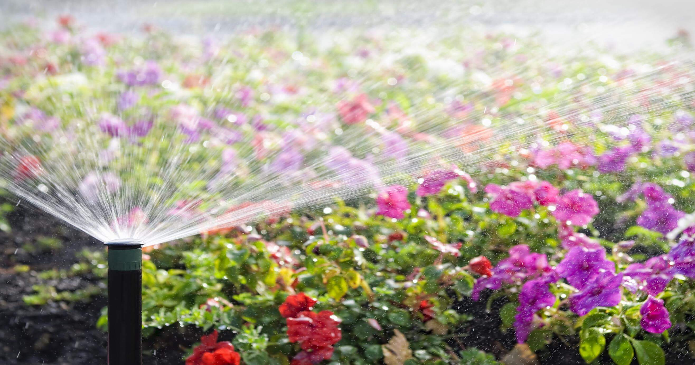 How to Install Sprinklers