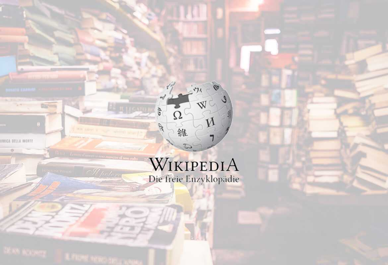 Wikimedia Logo Fullscreen