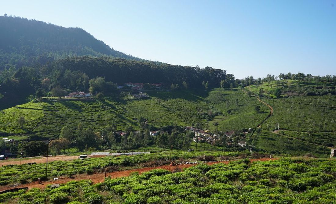 Hill Valley Enclave is directly opposite Glenwood bungalow along the Coonoor-Kotagiri Road