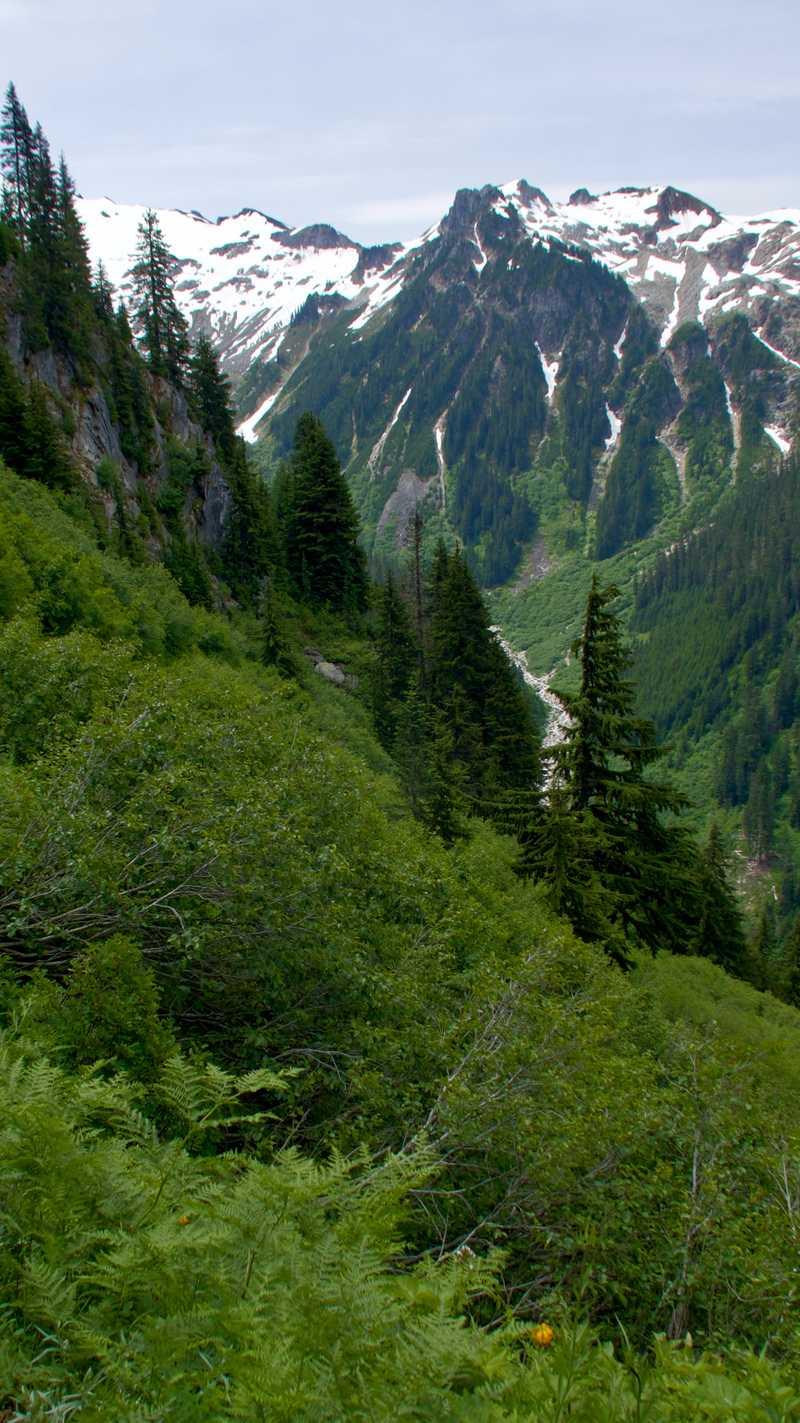 Descending into a deep valley