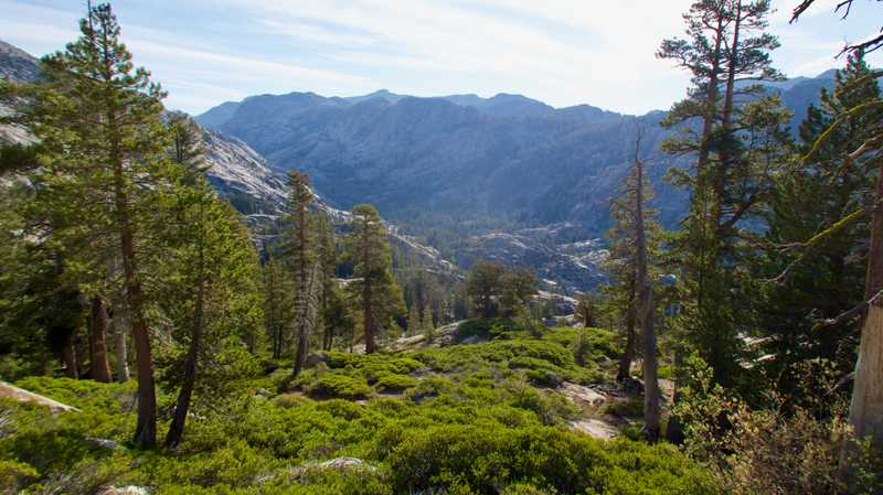 A view of Stubblefield Canyon in Yosemite