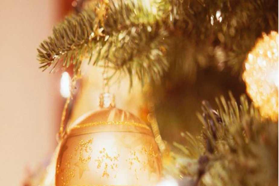 Brasserie Canal Take away Kerstmenu