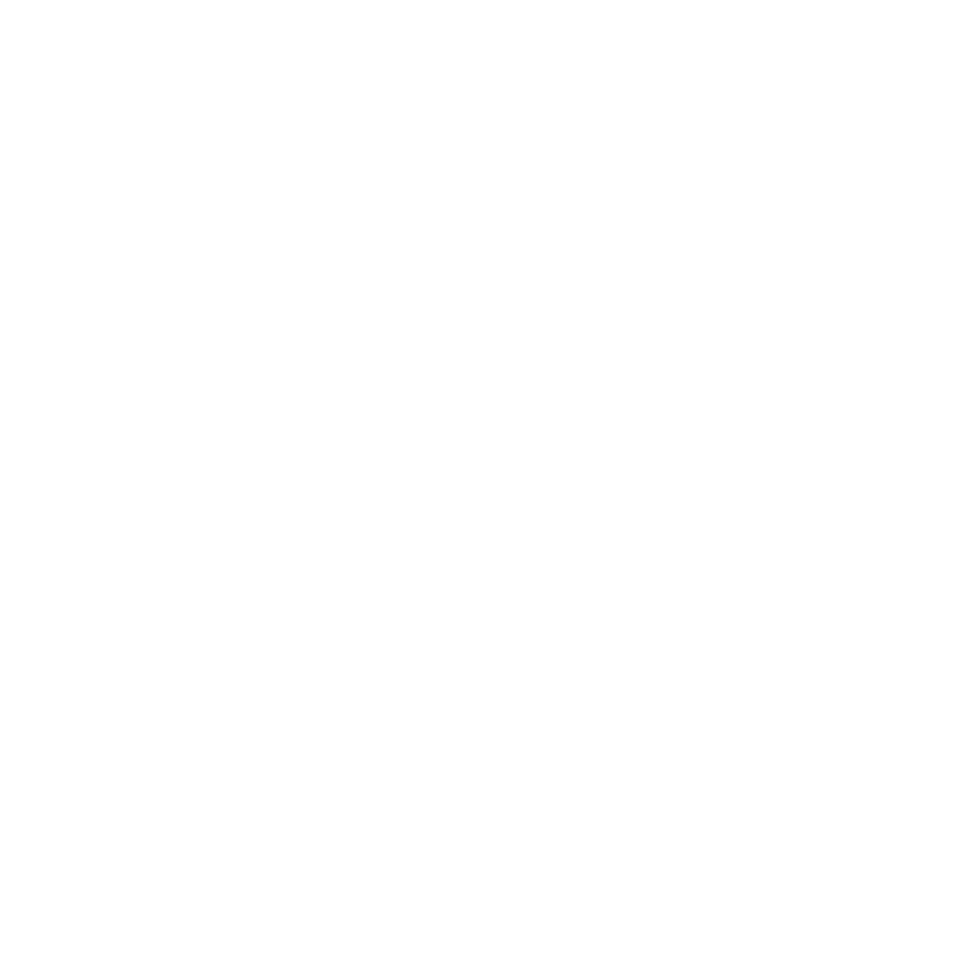 roblouw logo