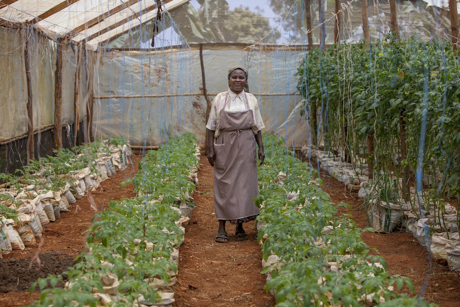Alice Maina with her crops