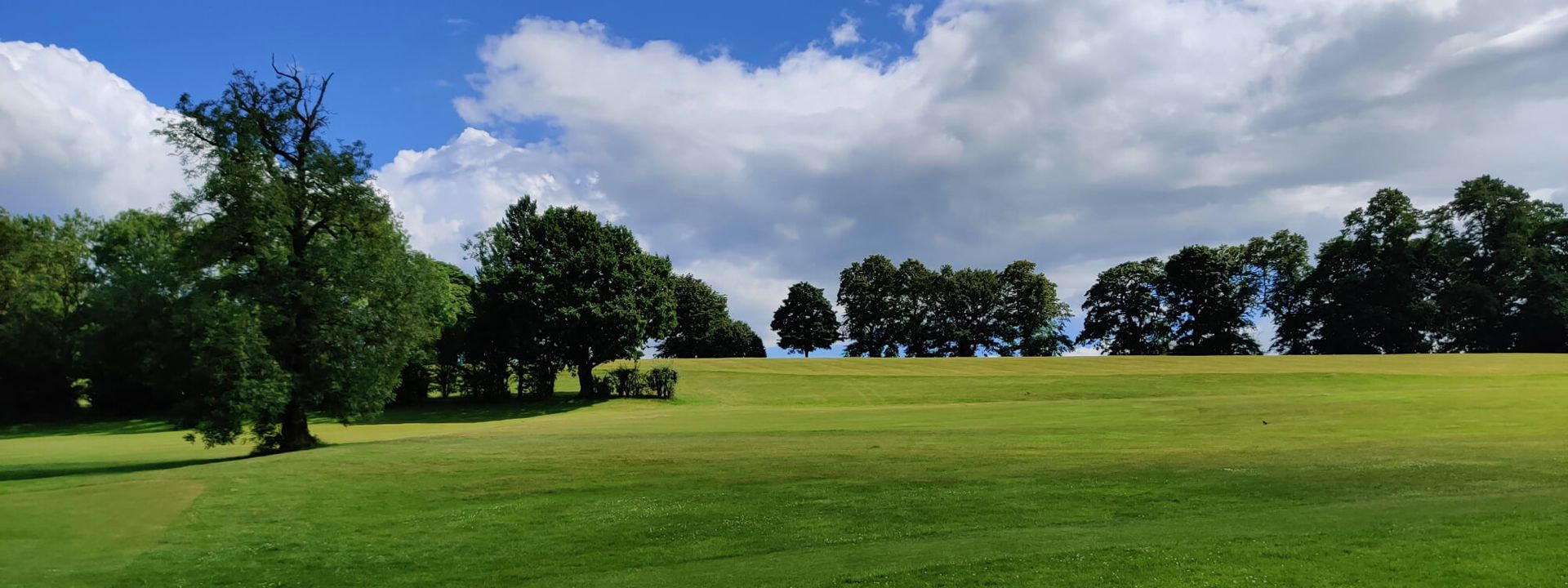 Gotts Park rolling grassy field