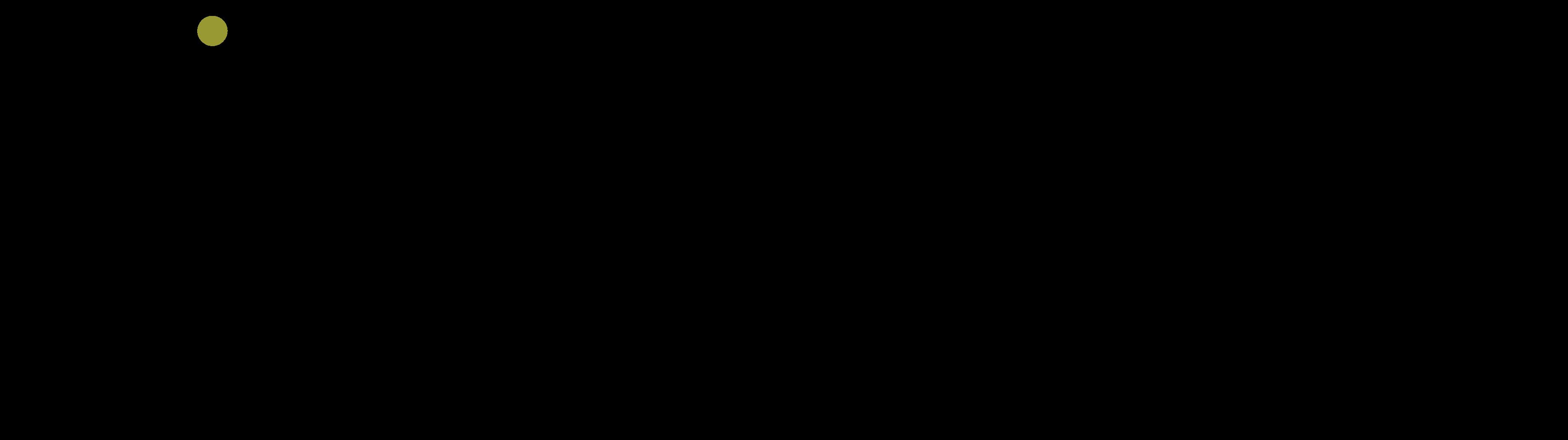 logo Bihr expertises et conseil