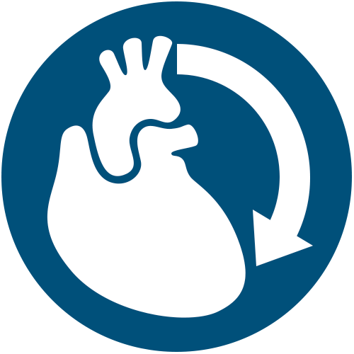 Bypass icon