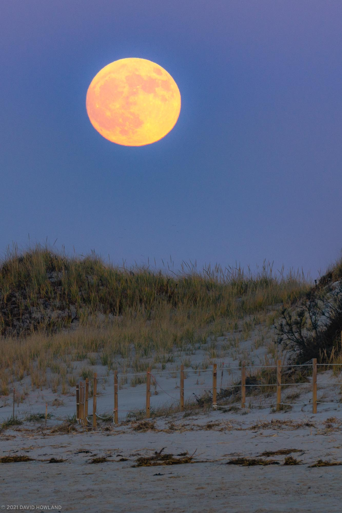 Chapin Beach Moonrise