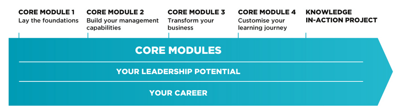 Visual Executive MBA Modules EN desktop