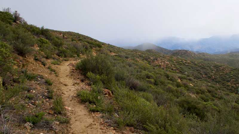 The PCT begins to climb