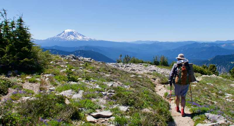 Walking across Snowgrass Flats on the PCT with Mt. Adams ahead