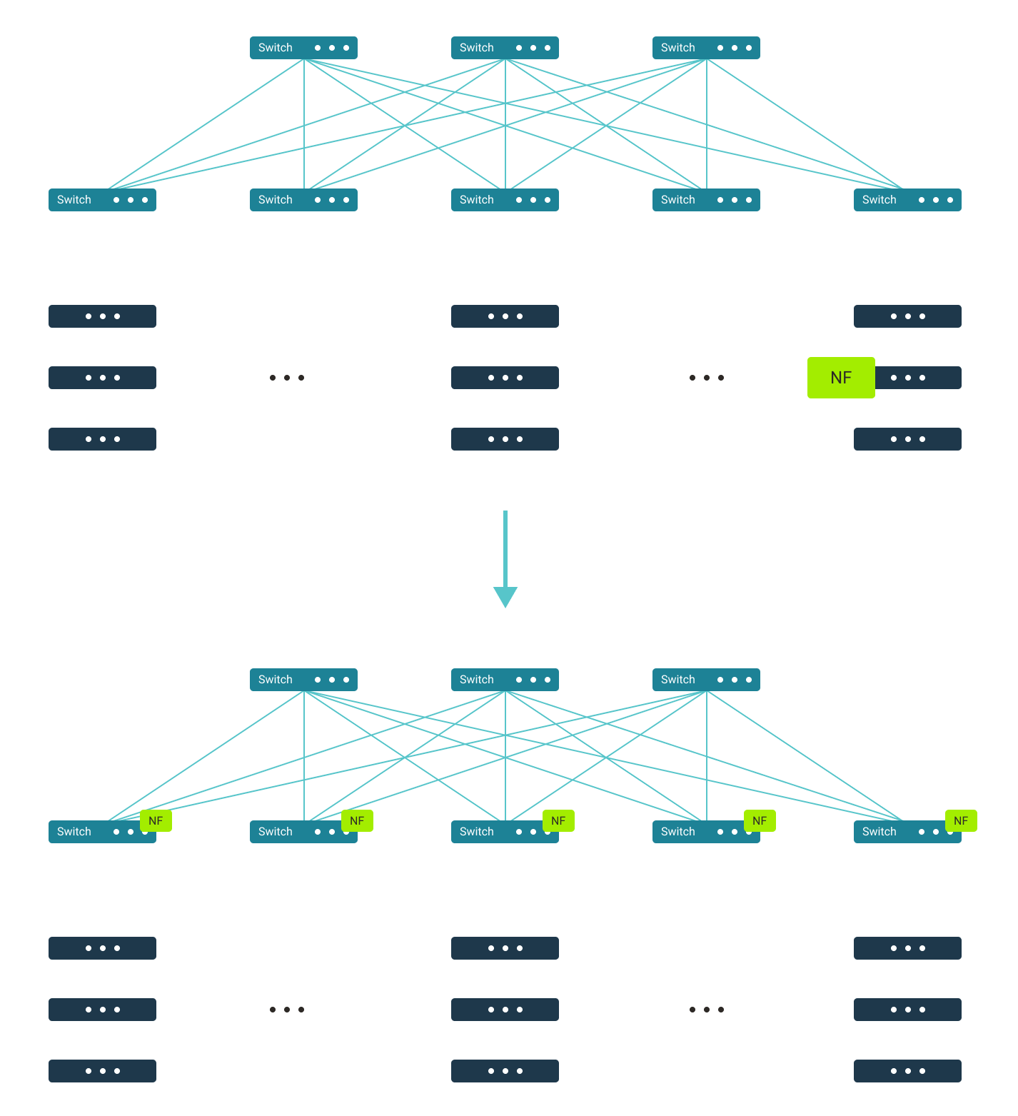 Network function distribution—to fabric switches