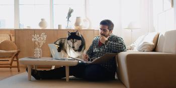 How to Become a Remote Web Developer