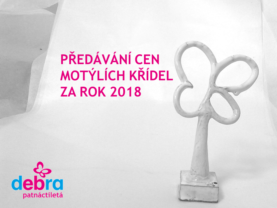 ceny_motylich_kridel_2019_prezentace.png