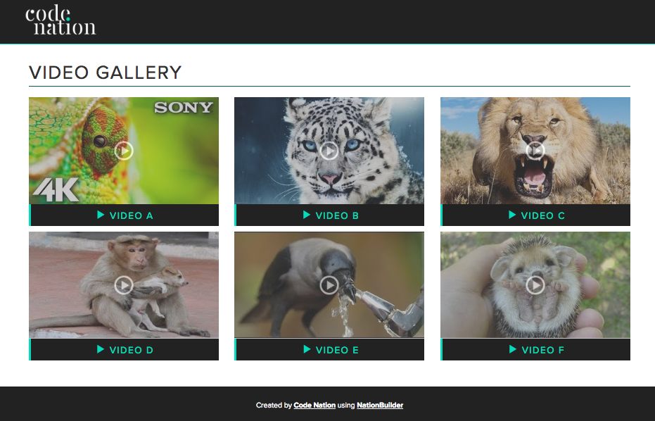 Add a Video Gallery to your NationBuilder site