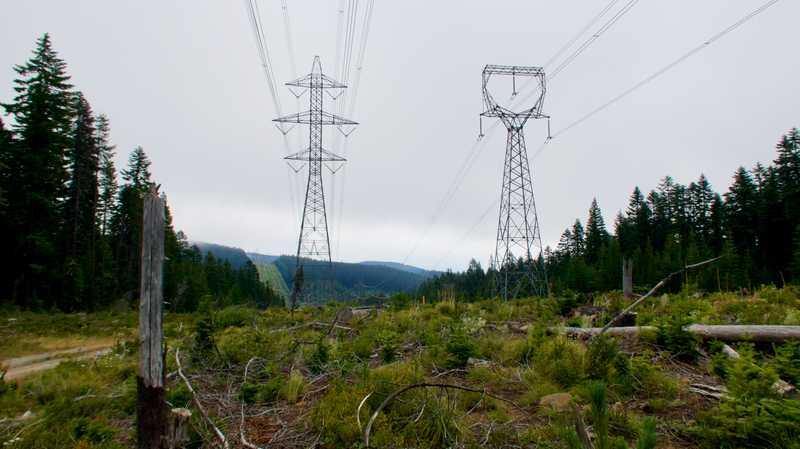 Power line cut