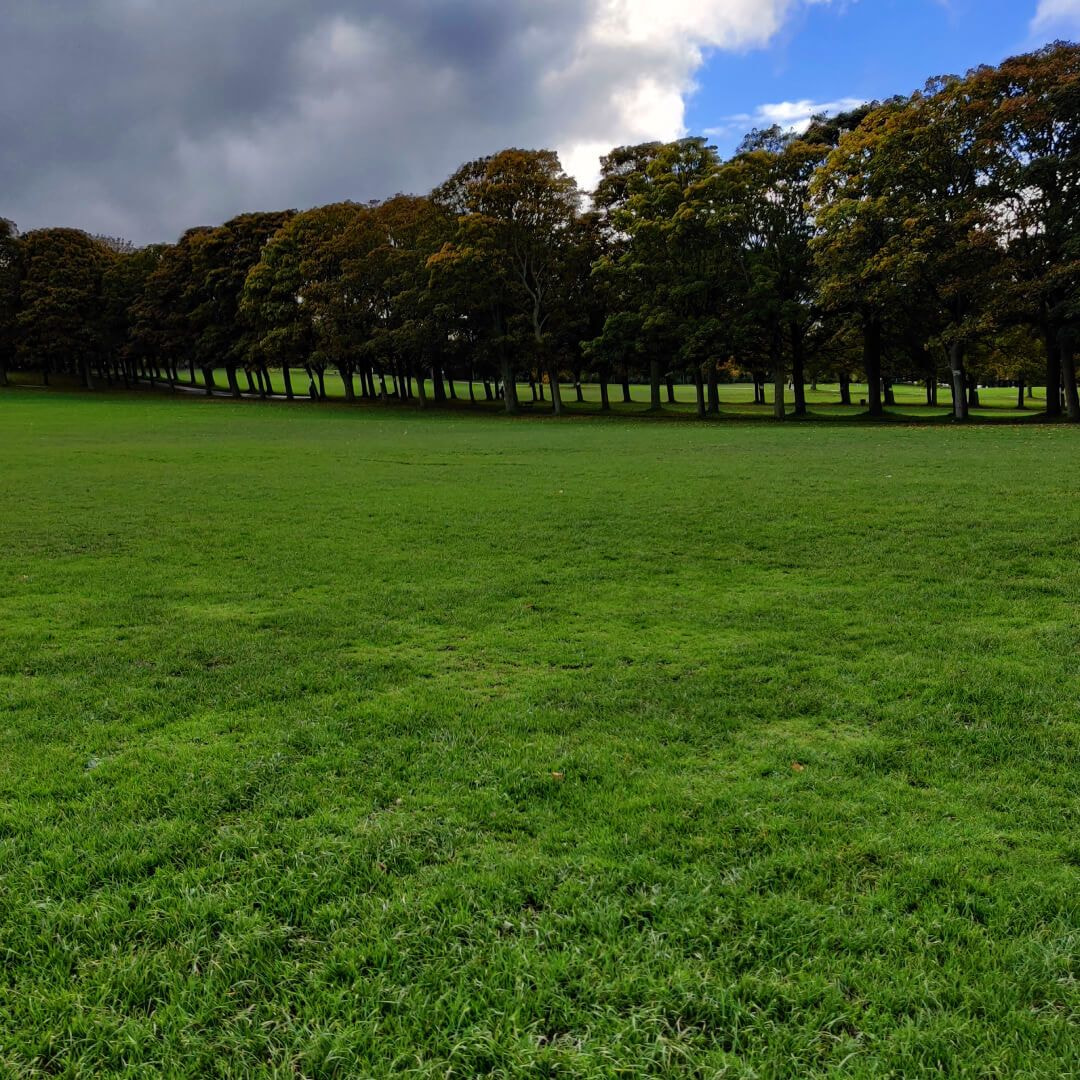 Woodhouse Moor/Hype field