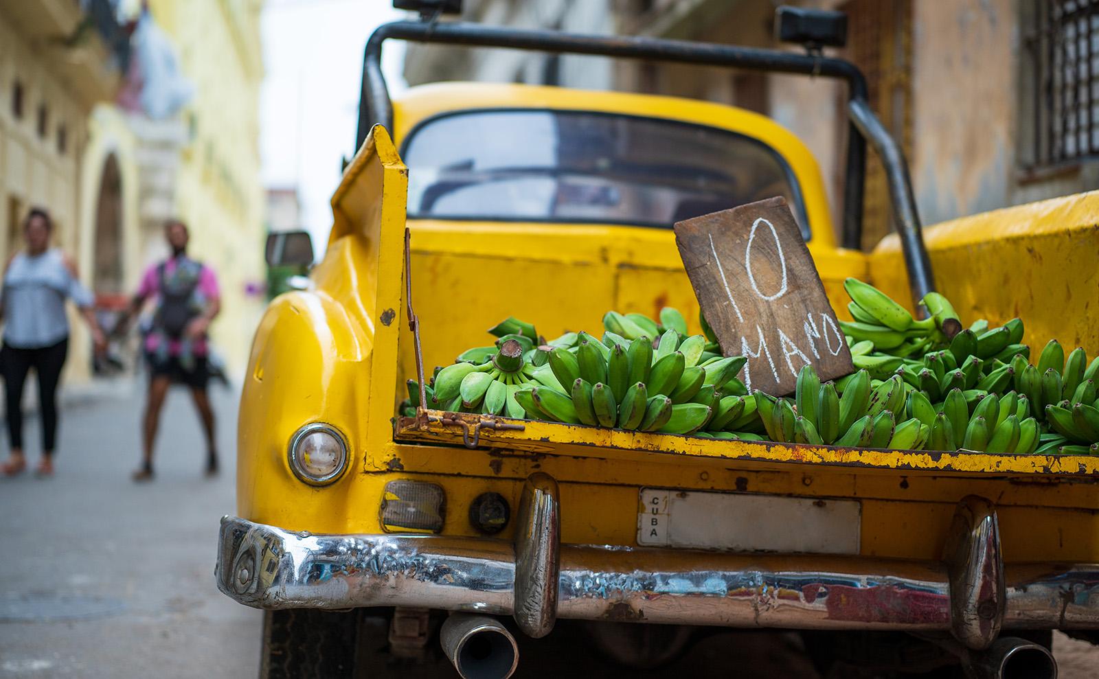 Cuban Picadillo with Plantains Inspired by Leonardo Padura's Novel 'Havana Fever'