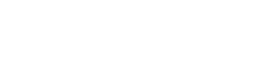 Solace Developers Logo