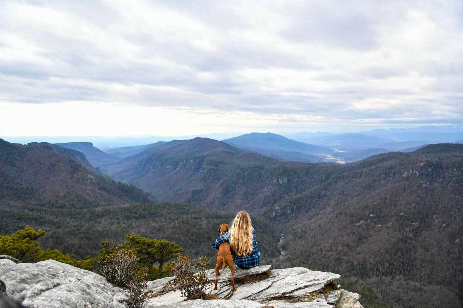 Dog-Friendly Hikes: North Carolina
